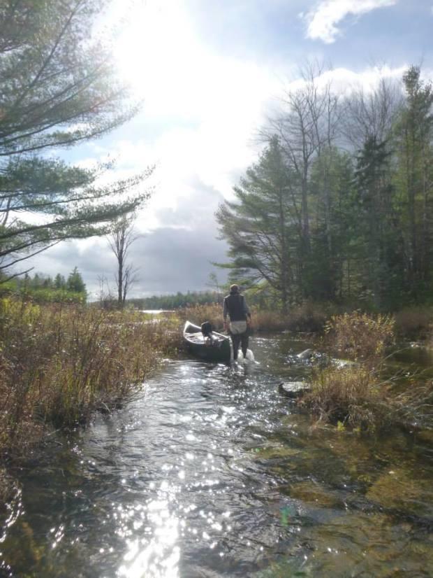 Long Lake Stream